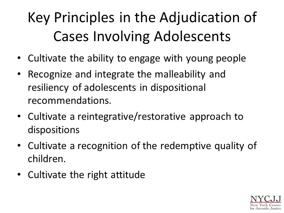 Key Principles in the Adjudication of Cases Involving Adolescents Cultivate the ability to engage with young people Recognize and integrate the malleability and resiliency of adolescents in dispositional recommendations.
