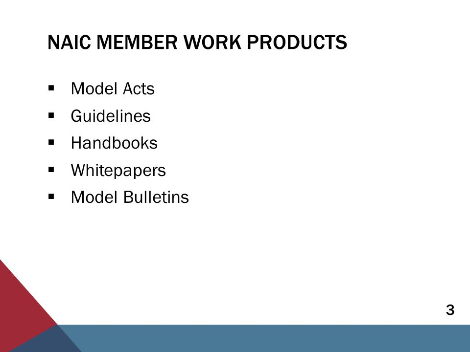 NAIC MEMBER WORK PRODUCTS  Model Acts  Guidelines  Handbooks  Whitepapers  Model Bulletins 3