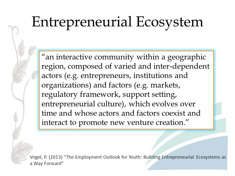 Entrepreneurial Ecosystem Ecosystem Questions 1.What is your management structure.