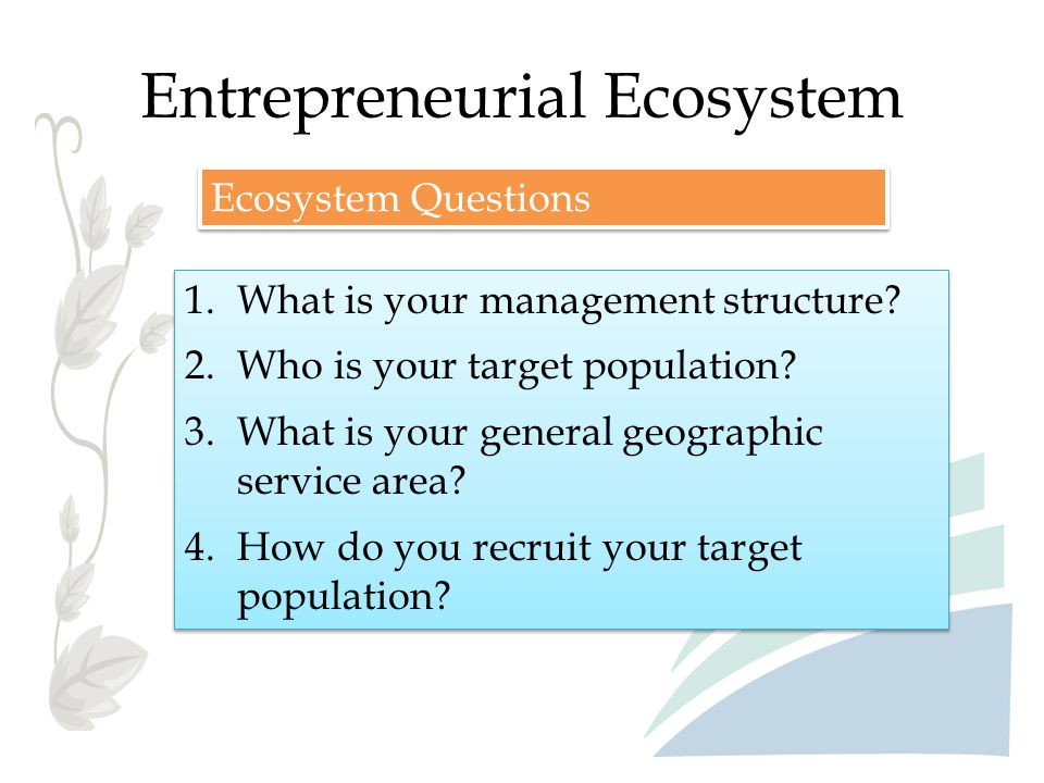 Entrepreneurial Ecosystem Ecosystem Questions 1.What is your management structure? 2.Who is your target population? 3.What is your general geographic