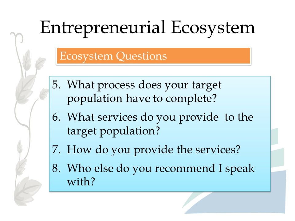 Entrepreneurial Ecosystem 5.What process does your target population have to complete? 6.What services do you provide to the target population? 7.How