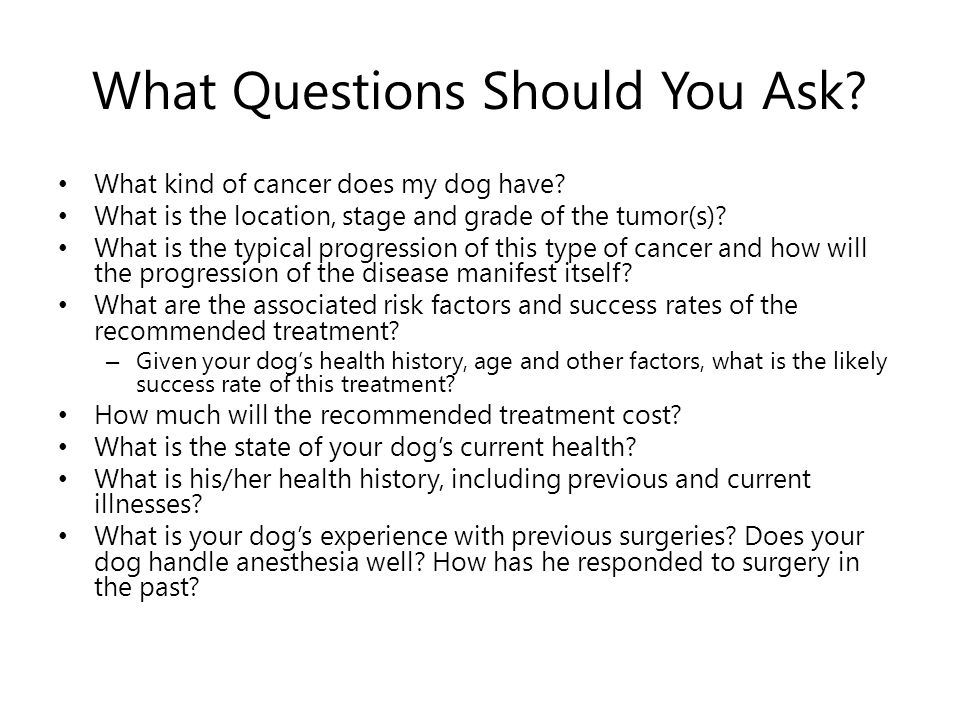 What Questions Should You Ask. What kind of cancer does my dog have.
