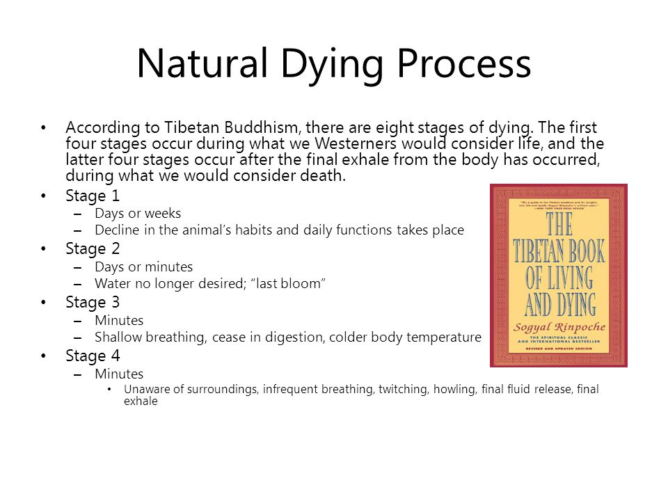 Natural Dying Process According to Tibetan Buddhism, there are eight stages of dying.