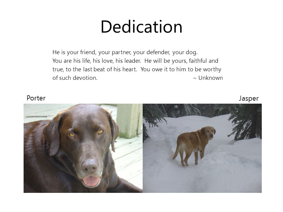 Dedication He is your friend, your partner, your defender, your dog.