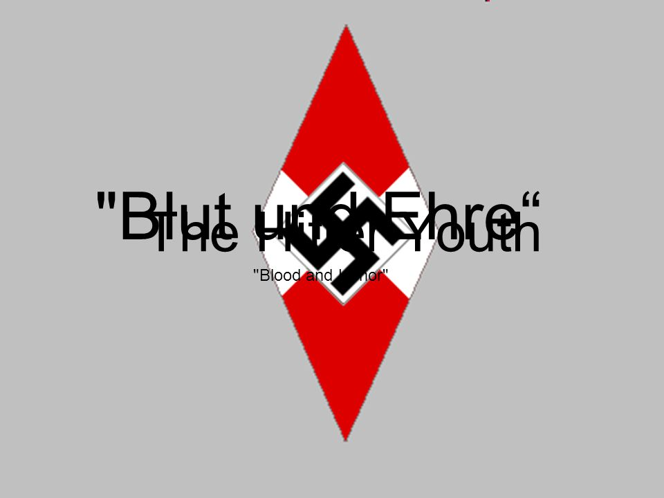 The Hitler Youth Blut und Ehre Blood and Honor