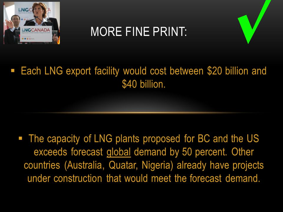  Each LNG export facility would cost between $20 billion and $40 billion.