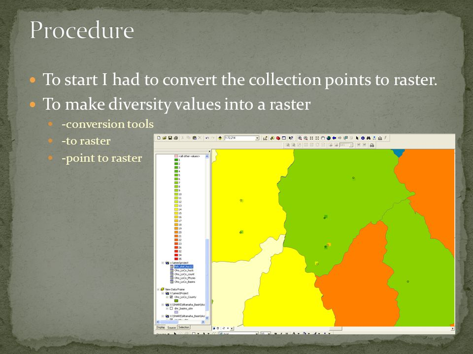 To start I had to convert the collection points to raster. To make diversity values into a raster -conversion tools -to raster -point to raster