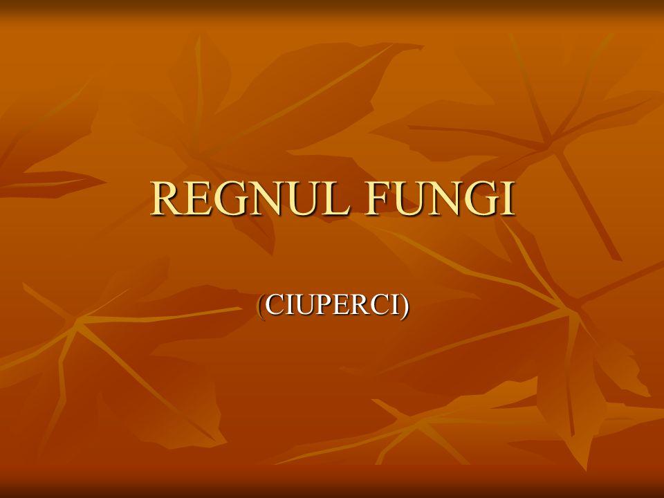 REGNUL FUNGI (CIUPERCI)