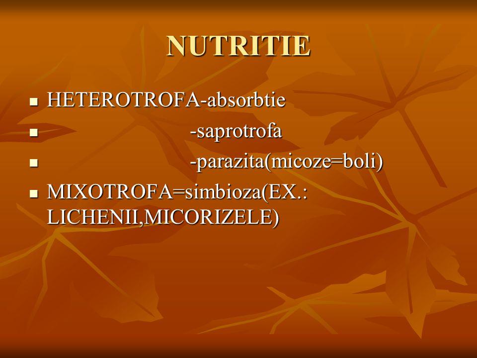 NUTRITIE HETEROTROFA-absorbtie HETEROTROFA-absorbtie -saprotrofa -saprotrofa -parazita(micoze=boli) -parazita(micoze=boli) MIXOTROFA=simbioza(EX.: LICHENII,MICORIZELE) MIXOTROFA=simbioza(EX.: LICHENII,MICORIZELE)