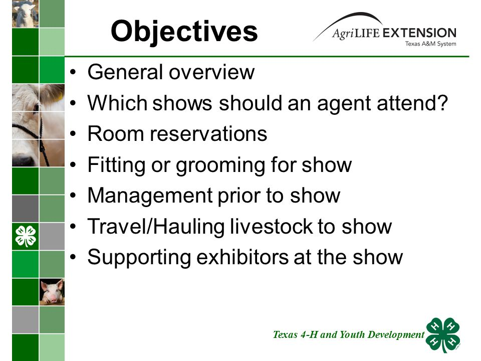 General Overview Agents should support youth by watching youth show their projects and make each show a learning experience Expertise on a specific animal project is not necessary to keep a program growing.