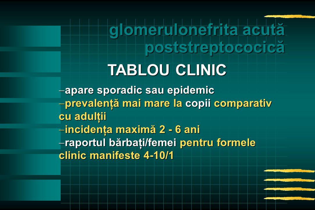  apare sporadic sau epidemic  prevalenţă mai mare la copii comparativ cu adulţii  incidenţa maximă 2 - 6 ani  raportul bărbaţi/femei pentru formele clinic manifeste 4-10/1 TABLOU CLINIC glomerulonefrita acută poststreptococică