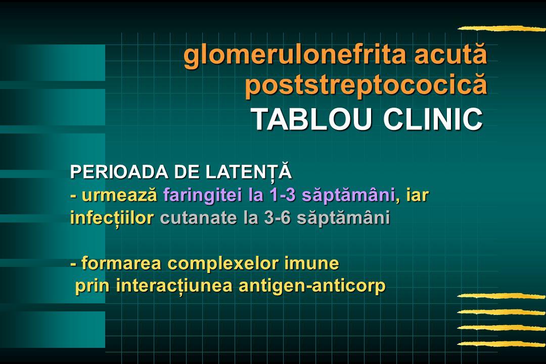PERIOADA DE LATENŢĂ - urmează faringitei la 1-3 săptămâni, iar infecţiilor cutanate la 3-6 săptămâni - formarea complexelor imune prin interacţiunea antigen-anticorp prin interacţiunea antigen-anticorp glomerulonefrita acută poststreptococică TABLOU CLINIC