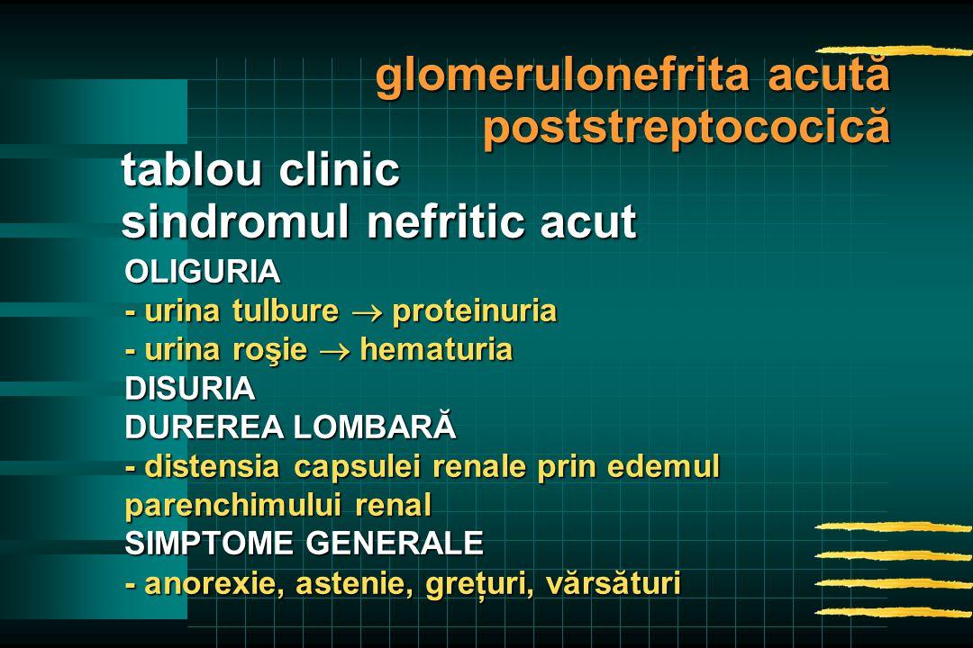 OLIGURIA - urina tulbure  proteinuria - urina roşie  hematuria DISURIA DUREREA LOMBARĂ - distensia capsulei renale prin edemul parenchimului renal SIMPTOME GENERALE - anorexie, astenie, greţuri, vărsături tablou clinic sindromul nefritic acut glomerulonefrita acută poststreptococică