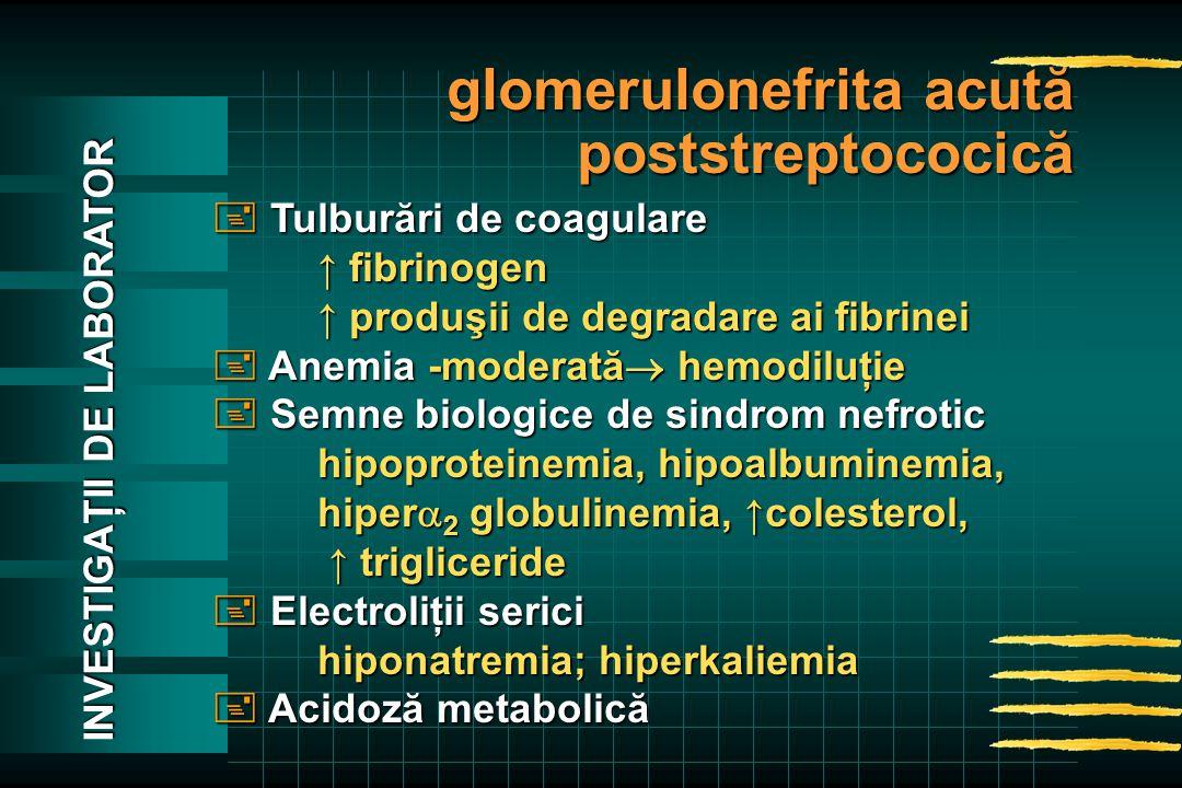  Tulburări de coagulare ↑ fibrinogen ↑ produşii de degradare ai fibrinei  Anemia -moderată  hemodiluţie  Semne biologice de sindrom nefrotic hipoproteinemia, hipoalbuminemia, hiper  2 globulinemia, ↑colesterol, ↑trigliceride ↑ trigliceride  Electroliţii serici hiponatremia; hiperkaliemia  Acidoză metabolică glomerulonefrita acută poststreptococică INVESTIGAŢII DE LABORATOR