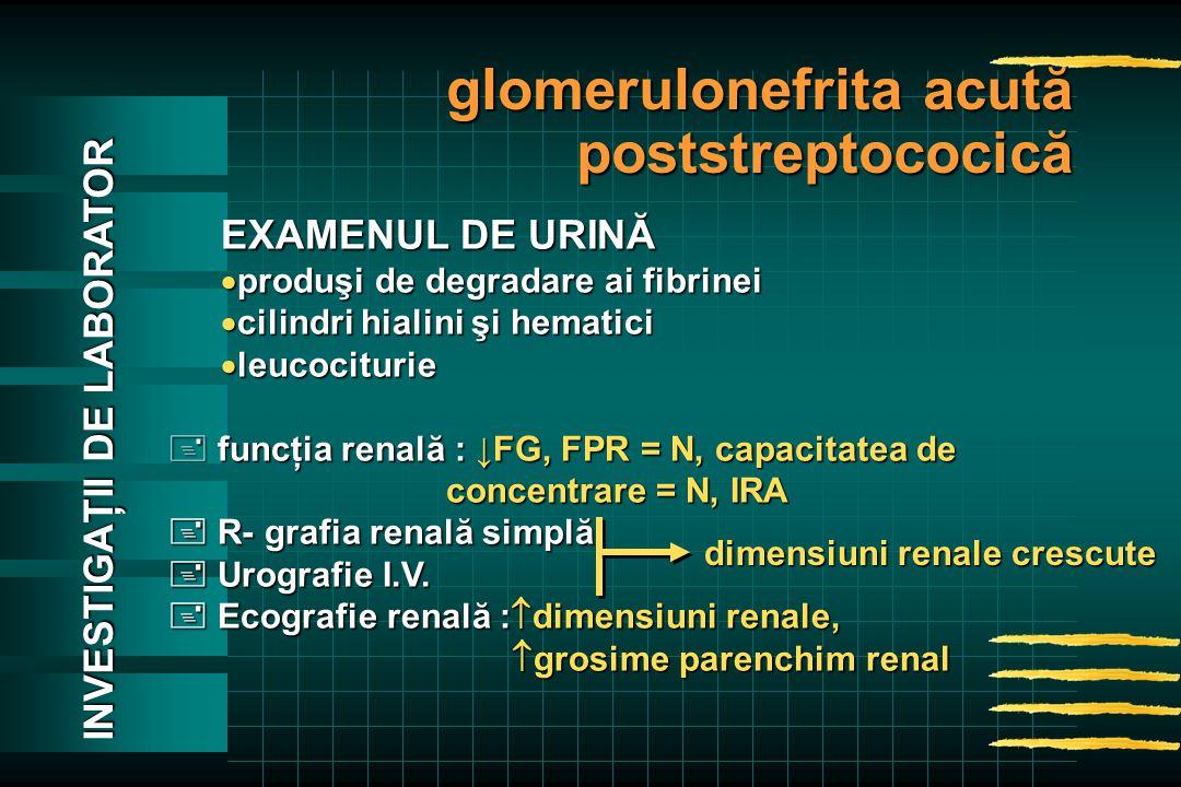 EXAMENUL DE URINĂ  produşi de degradare ai fibrinei  cilindri hialini şi hematici  leucociturie + funcţia renală : ↓FG, FPR = N, capacitatea de concentrare = N, IRA concentrare = N, IRA  R- grafia renală simplă  Urografie I.V.