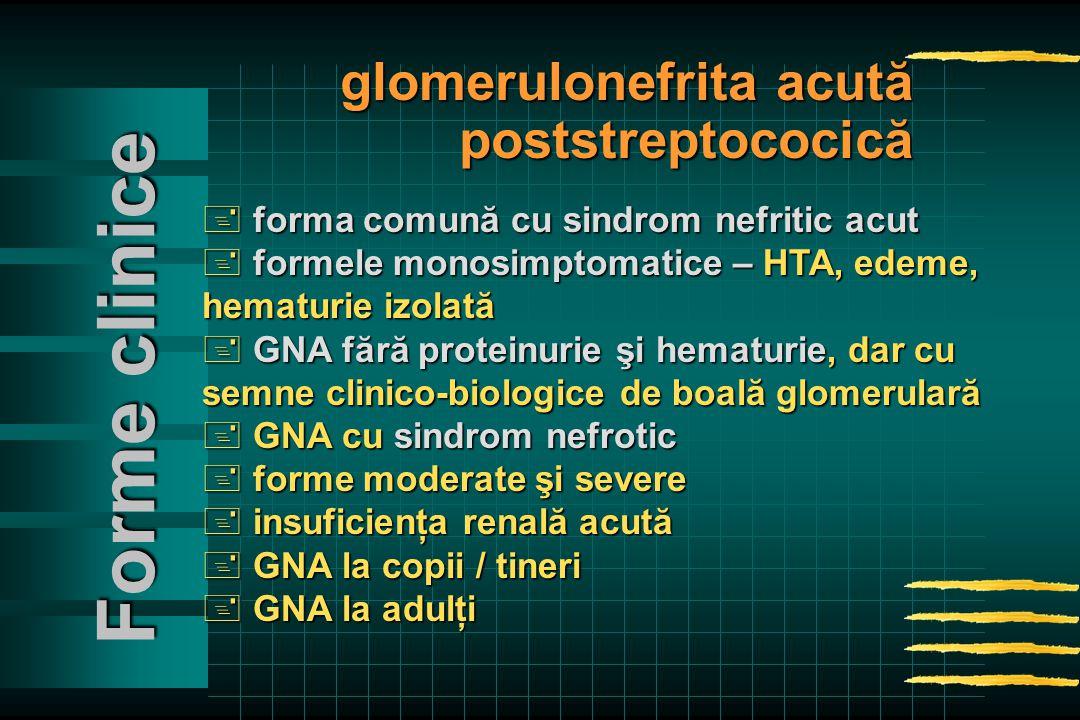 + forma comună cu sindrom nefritic acut + formele monosimptomatice – HTA, edeme, hematurie izolată + GNA fără proteinurie şi hematurie, dar cu semne clinico-biologice de boală glomerulară + GNA cu sindrom nefrotic + forme moderate şi severe + insuficienţa renală acută + GNA la copii / tineri + GNA la adulţi Forme clinice glomerulonefrita acută poststreptococică