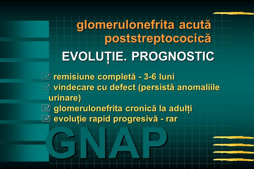 + remisiune completă - 3-6 luni + vindecare cu defect (persistă anomaliile urinare) urinare)  glomerulonefrita cronică la adulţi  evoluţie rapid progresivă - rar GNAP EVOLUŢIE.