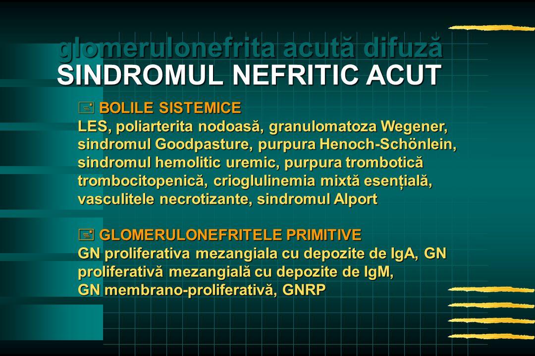 + BOLILE SISTEMICE LES, poliarterita nodoasă, granulomatoza Wegener, sindromul Goodpasture, purpura Henoch-Schönlein, sindromul hemolitic uremic, purpura trombotică trombocitopenică, crioglulinemia mixtă esenţială, vasculitele necrotizante, sindromul Alport  GLOMERULONEFRITELE PRIMITIVE GN proliferativa mezangiala cu depozite de IgA, GN proliferativă mezangială cu depozite de IgM, GN membrano-proliferativă, GNRP glomerulonefrita acută difuză SINDROMUL NEFRITIC ACUT