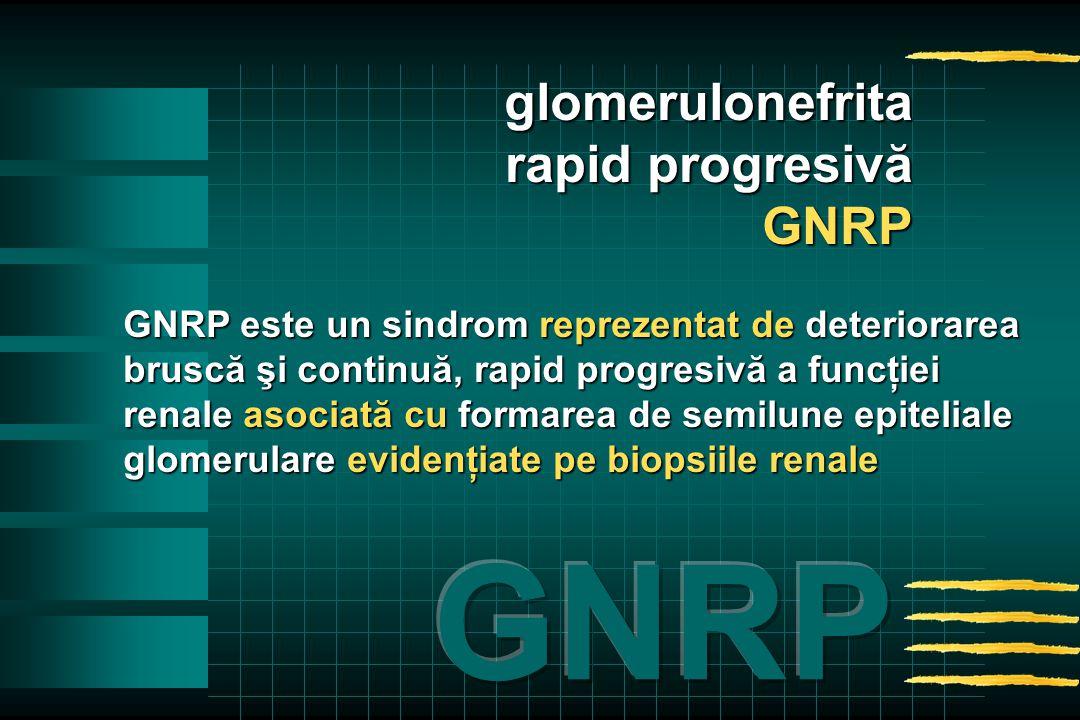 GNRP este un sindrom reprezentat de deteriorarea bruscă şi continuă, rapid progresivă a funcţiei renale asociată cu formarea de semilune epiteliale glomerulare evidenţiate pe biopsiile renale glomerulonefrita rapid progresivă GNRP