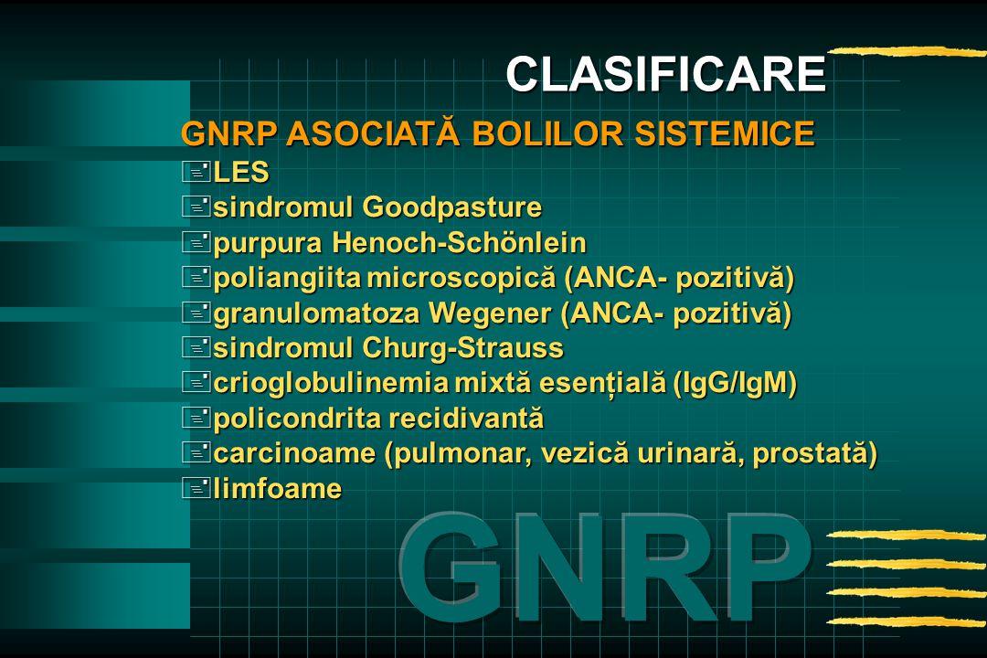 GNRP ASOCIATĂ BOLILOR SISTEMICE +LES +sindromul Goodpasture +purpura Henoch-Schönlein +poliangiita microscopică (ANCA- pozitivă) +granulomatoza Wegener (ANCA- pozitivă) +sindromul Churg-Strauss +crioglobulinemia mixtă esenţială (IgG/IgM) +policondrita recidivantă +carcinoame (pulmonar, vezică urinară, prostată) +limfoame CLASIFICARE