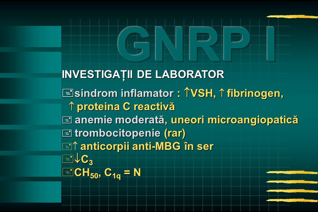 INVESTIGAŢII DE LABORATOR  sindrom inflamator :  VSH,  fibrinogen,  proteina C reactivă  proteina C reactivă  anemiemoderată, uneori microangiopatică  anemie moderată, uneori microangiopatică  trombocitopenie (rar) anticorpiianti-MBG în ser   anticorpii anti-MBG în ser +  C 3 +CH 50, C 1q = N