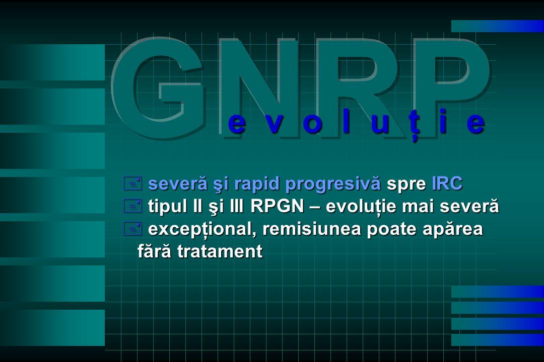 + severă şi rapid progresivă spre IRC + tipul II şi III RPGN – evoluţie mai severă + excepţional, remisiunea poate apărea fără tratament fără tratament e v o l u ţ i e