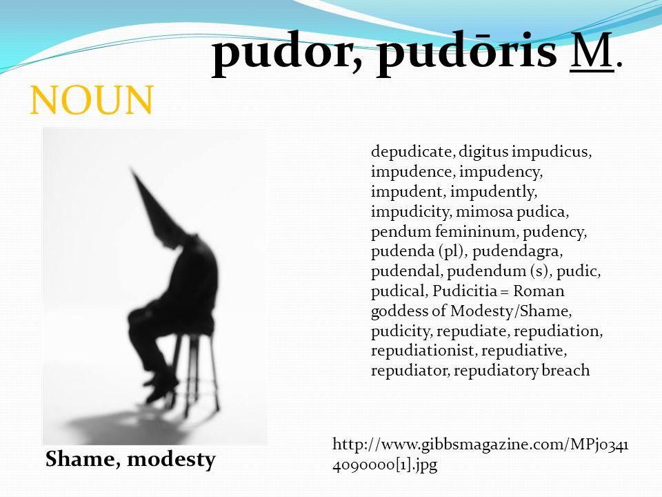 NOUN pudor, pudōris M. Shame, modesty depudicate, digitus impudicus, impudence, impudency, impudent, impudently, impudicity, mimosa pudica, pendum fem