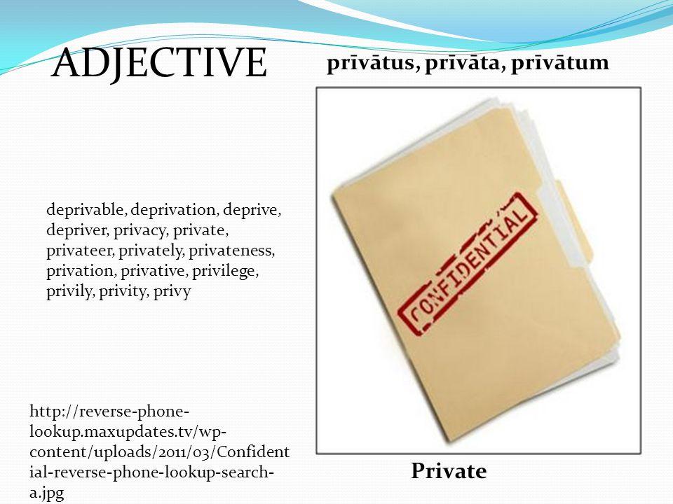 ADJECTIVE prīvātus, prīvāta, prīvātum Private deprivable, deprivation, deprive, depriver, privacy, private, privateer, privately, privateness, privati