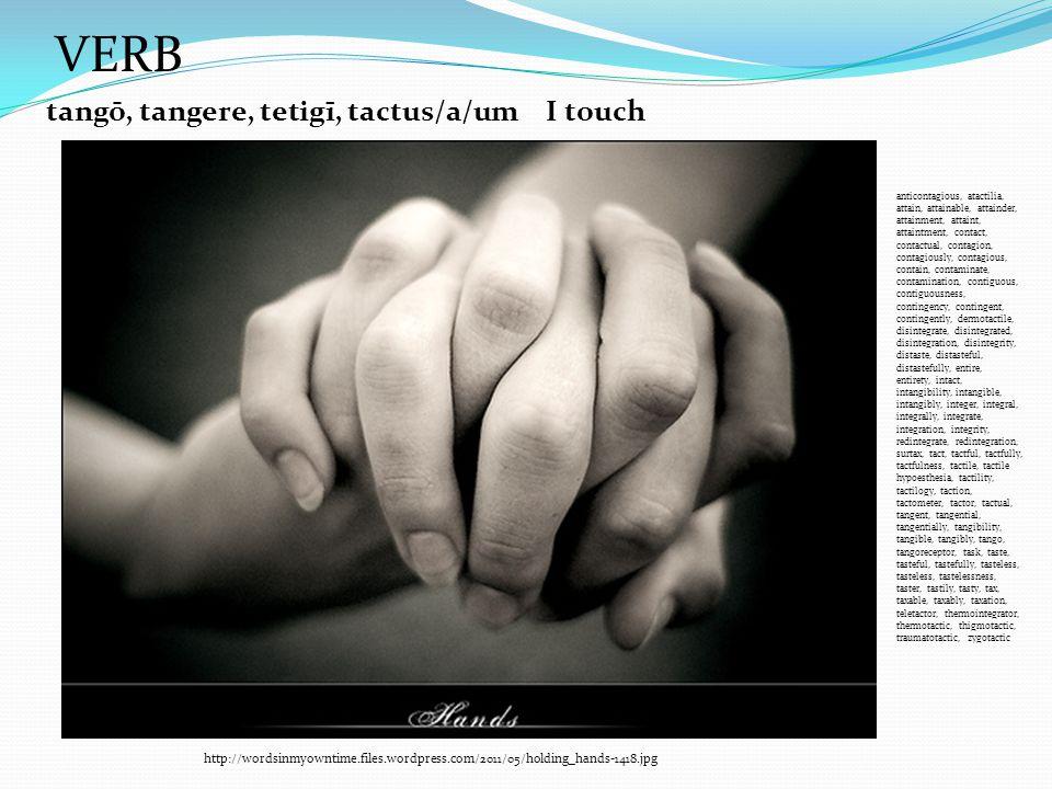 http://wordsinmyowntime.files.wordpress.com/2011/05/holding_hands-1418.jpg tangō, tangere, tetigī, tactus/a/um VERB I touch anticontagious, atactilia,