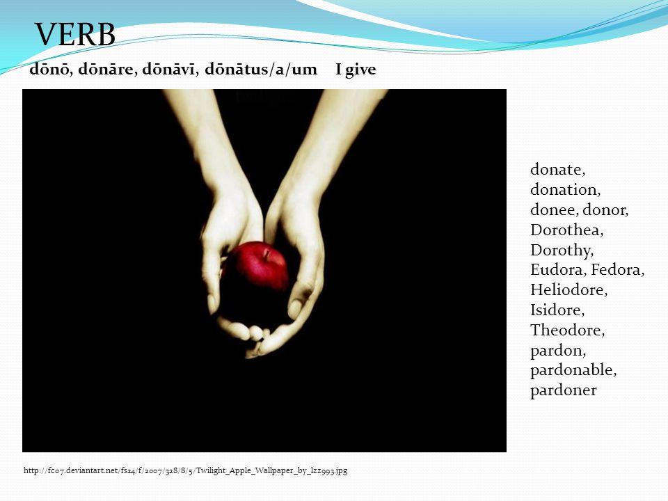 dōnō, dōnāre, dōnāvī, dōnātus/a/umI give donate, donation, donee, donor, Dorothea, Dorothy, Eudora, Fedora, Heliodore, Isidore, Theodore, pardon, pardonable, pardoner http://fc07.deviantart.net/fs24/f/2007/328/8/5/Twilight_Apple_Wallpaper_by_lzz993.jpg VERB