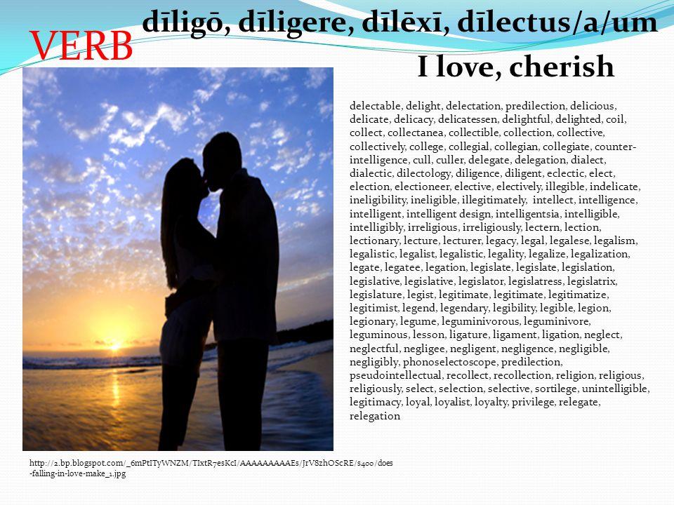 VERB http://2.bp.blogspot.com/_6mPtITyWNZM/TIxtR7esKcI/AAAAAAAAAEs/JrV8zhOScRE/s400/does -falling-in-love-make_1.jpg dīligō, dīligere, dīlēxī, dīlectu