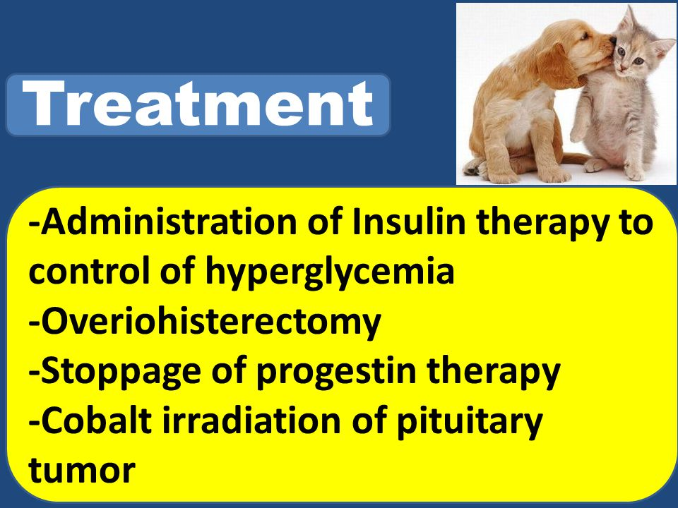 Treatment -Administration of Insulin therapy to control of hyperglycemia -Overiohisterectomy -Stoppage of progestin therapy -Cobalt irradiation of pituitary tumor