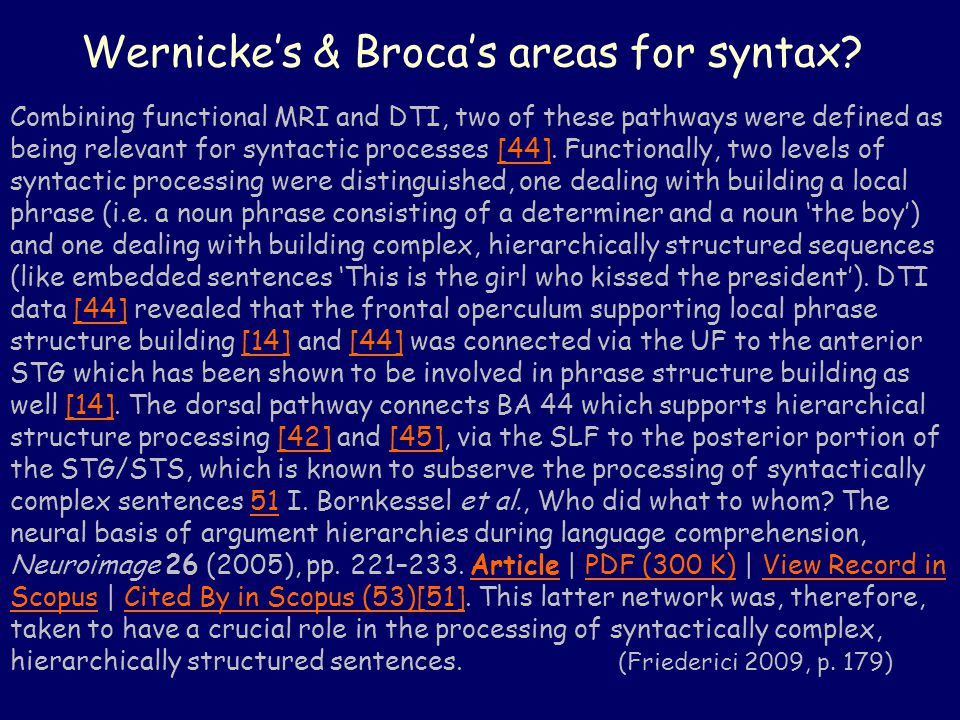 Wernicke's & Broca's areas for syntax.