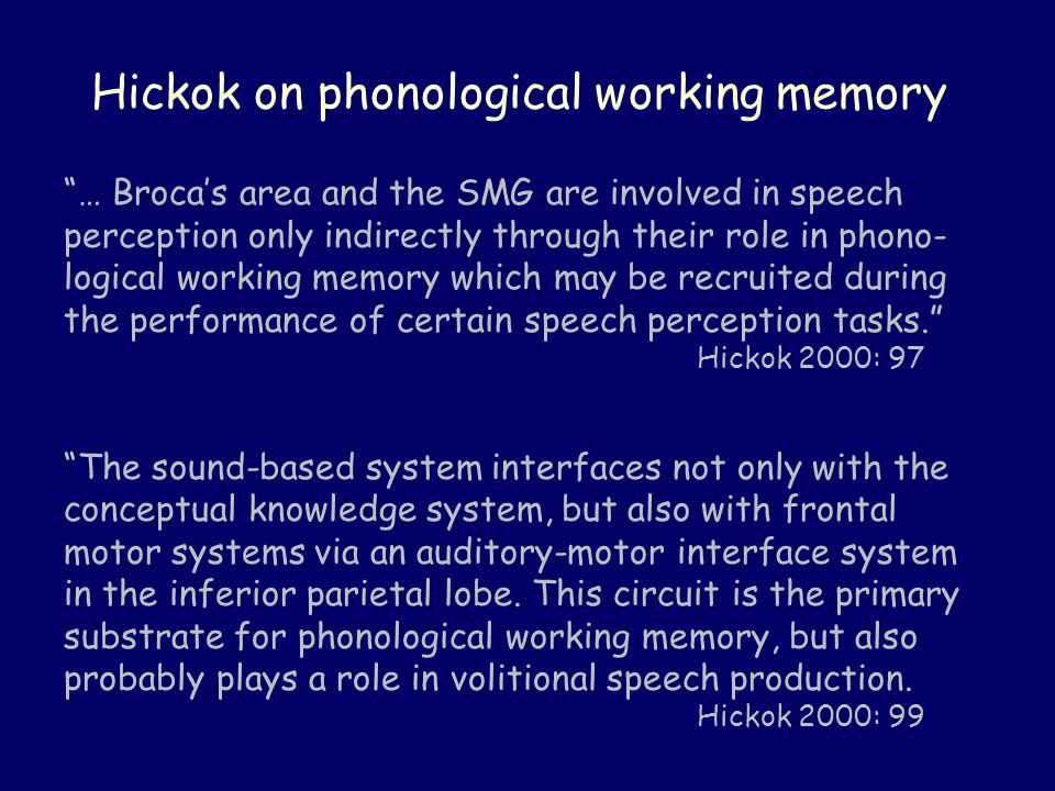 Hickok on phonological working memory … Broca's area and the SMG are involved in speech perception only indirectly through their role in phono- logical working memory which may be recruited during the performance of certain speech perception tasks. Hickok 2000: 97 The sound-based system interfaces not only with the conceptual knowledge system, but also with frontal motor systems via an auditory-motor interface system in the inferior parietal lobe.