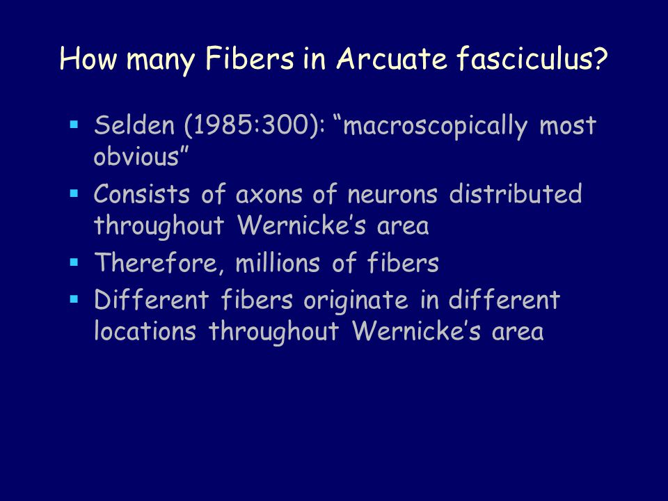 How many Fibers in Arcuate fasciculus.
