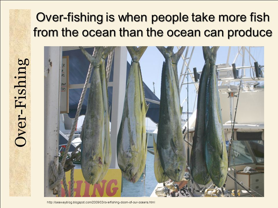 Over-fishing is when people take more fish from the ocean than the ocean can produce Smothering coral when particles settle out Reducing light availability which reduces coral photosynthesis and growth Sedimentation increases nutrients which allow algae overgrowth on coral Over-Fishing http://seawayblog.blogspot.com/2009/03/overfishing-doom-of-our-oceans.html