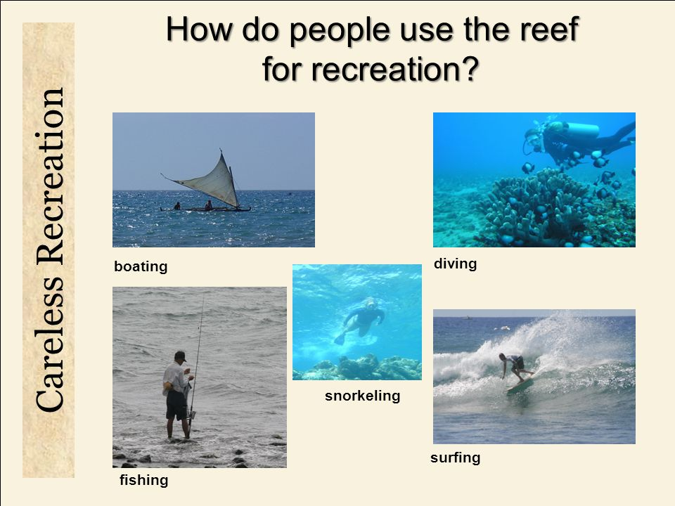 How do people use the reef for recreation.