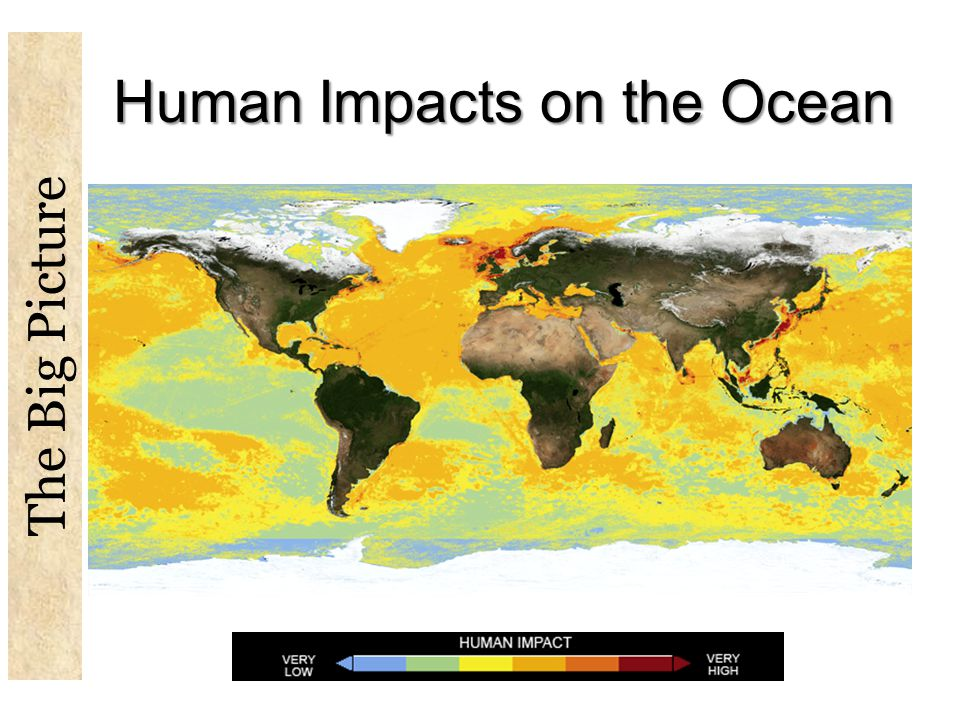 Human Impacts on the Ocean The Big Picture