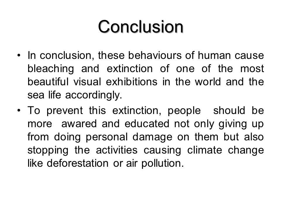 Conclusion In conclusion, these behaviours of human cause bleaching and extinction of one of the most beautiful visual exhibitions in the world and the sea life accordingly.