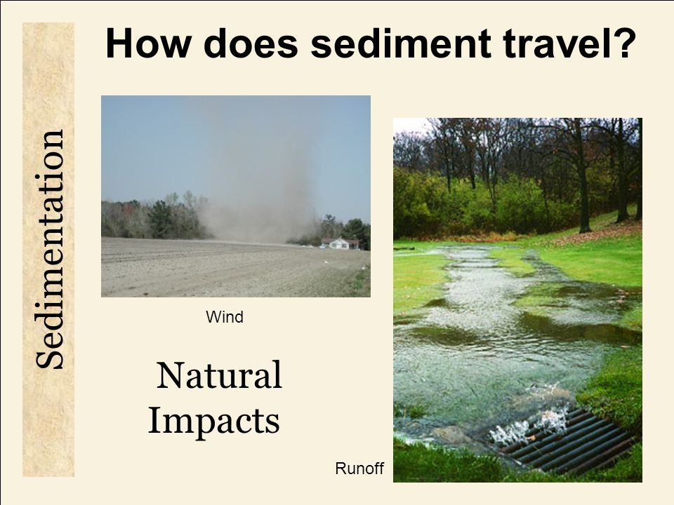 What are human causes of sedimentation.