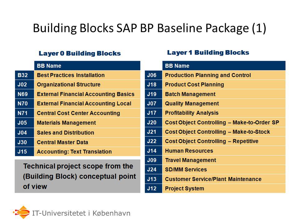Building Blocks SAP BP Baseline Package (1)