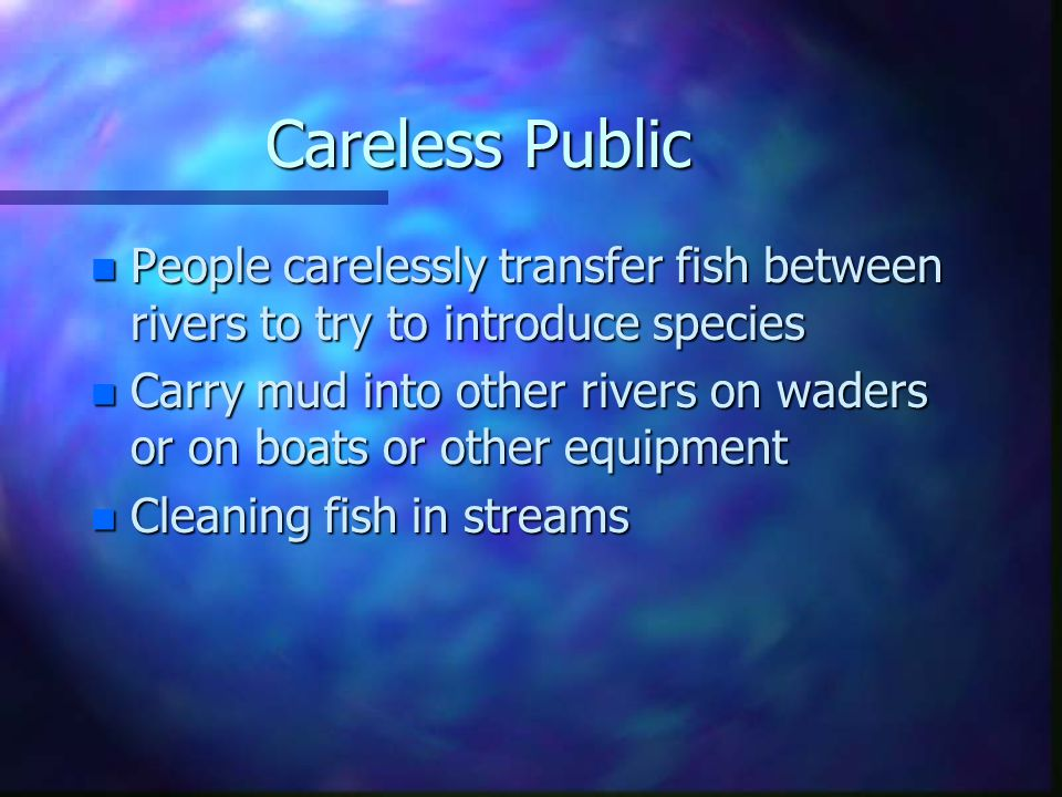 Careless Public n People carelessly transfer fish between rivers to try to introduce species n Carry mud into other rivers on waders or on boats or ot