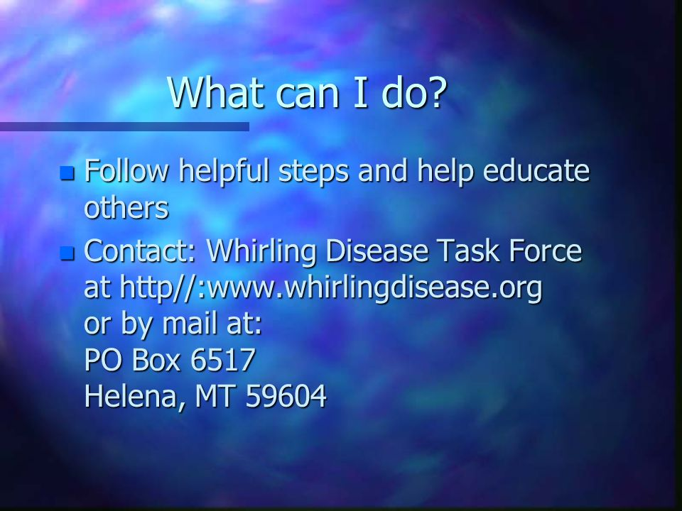 What can I do? n Follow helpful steps and help educate others n Contact: Whirling Disease Task Force at http//:www.whirlingdisease.org or by mail at: