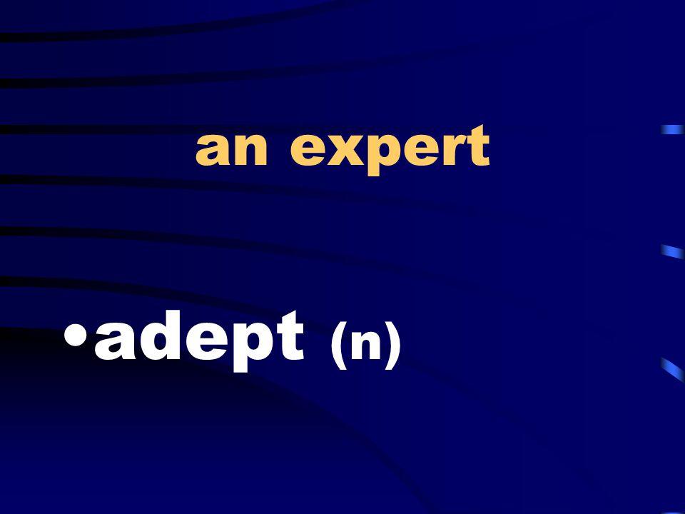 an expert adept (n)