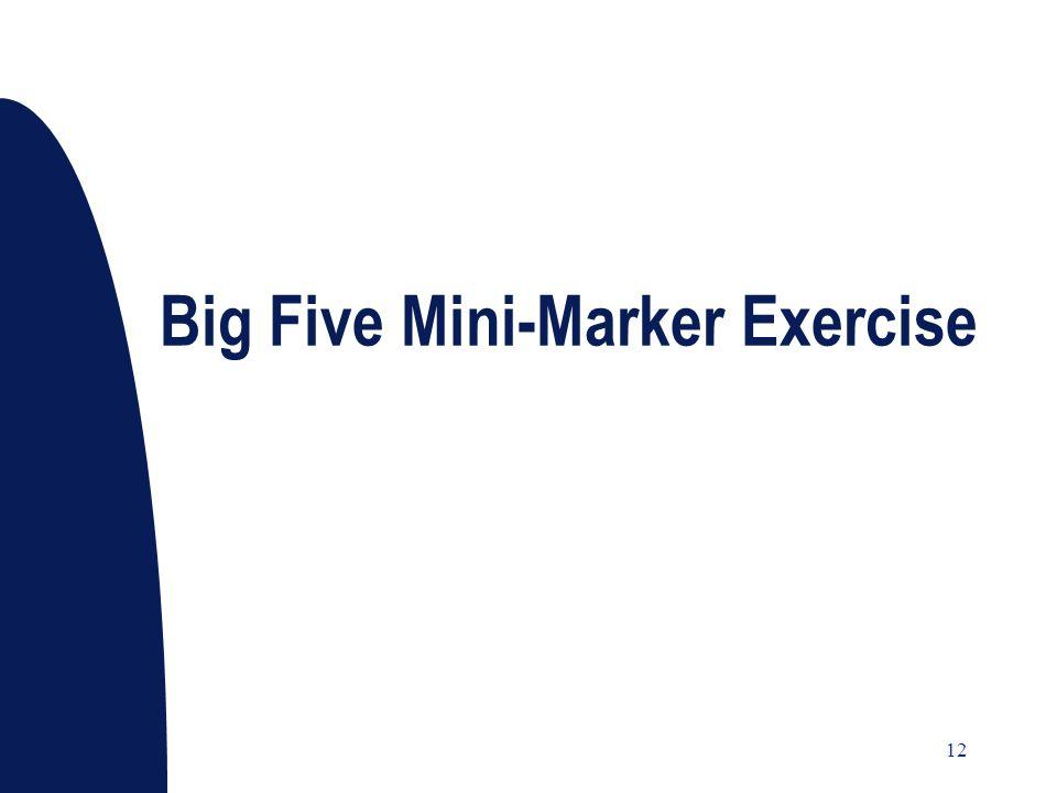 12 Big Five Mini-Marker Exercise