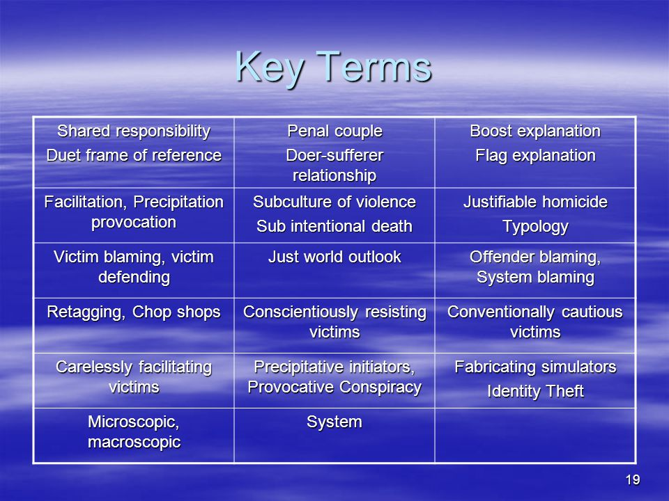 19 Key Terms Shared responsibility Duet frame of reference Penal couple Doer-sufferer relationship Boost explanation Flag explanation Facilitation, Pr