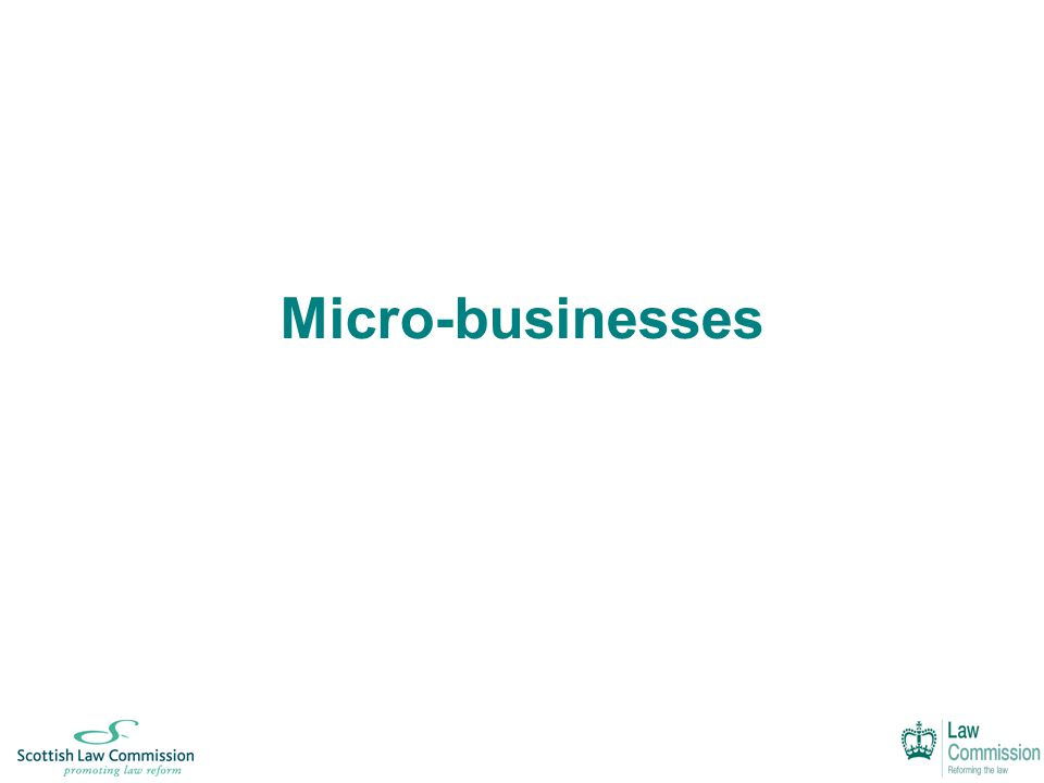Micro-businesses