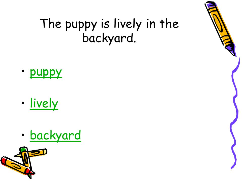 The puppy is lively in the backyard. puppy lively backyard