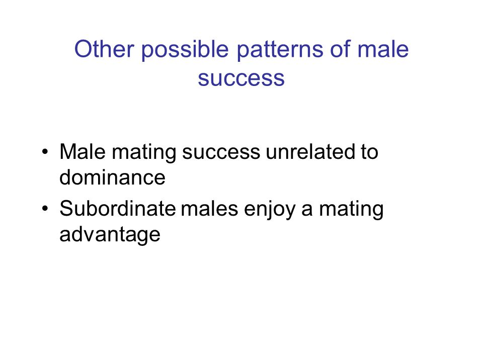 Other possible patterns of male success Male mating success unrelated to dominance Subordinate males enjoy a mating advantage
