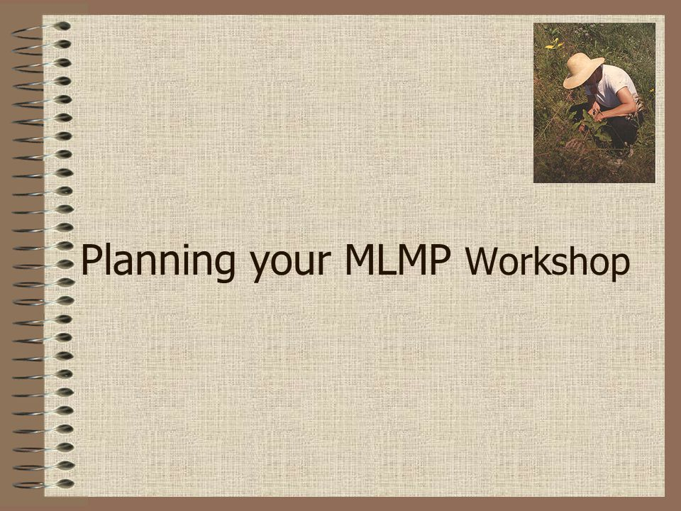 Planning your MLMP Workshop